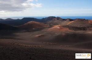 zwiedzanie lanzarote park wulkanów Timanfaya Lanzarote