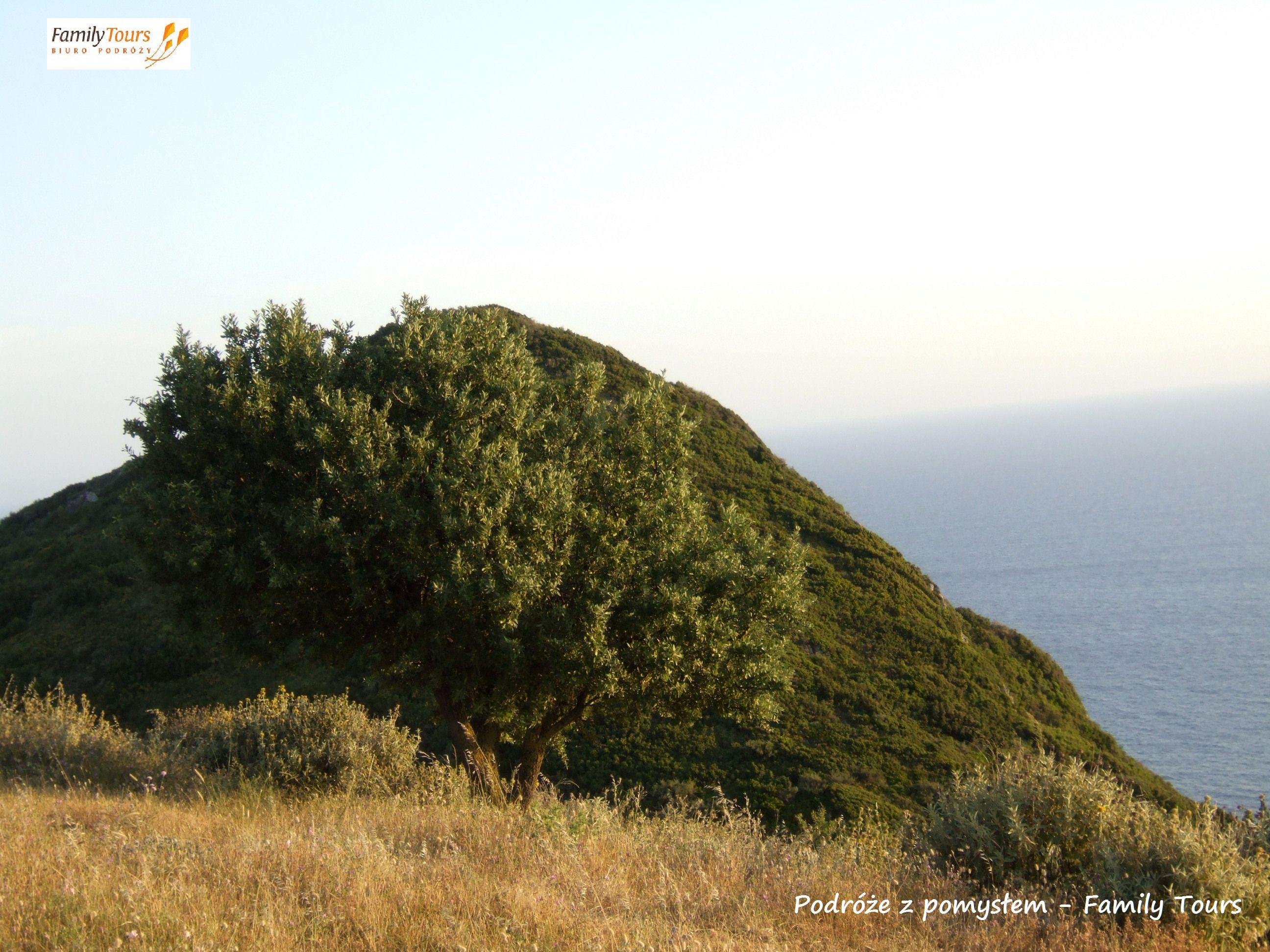 co zobaczyć na Korfu Afionas
